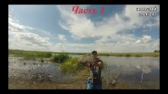 Сазан и крупный карась на фидер/ Рыбалка на реке Чулым