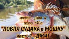ЛОВЛЯ СУДАКА в МОШКУ - 20 июня, рыбалка 2018, ловля судака на джиг. фильмы ДИВЕРА