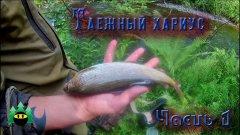 Рыбалка на таежной речке (часть 1) | Fishing on the taiga river (part 1)