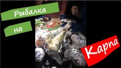 Часть 4. Улетная рыбалка на выходных. Около 100 кг карпа - курортная рыбалка и спасение садка.