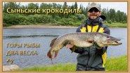 По полярной речке с крокодилами