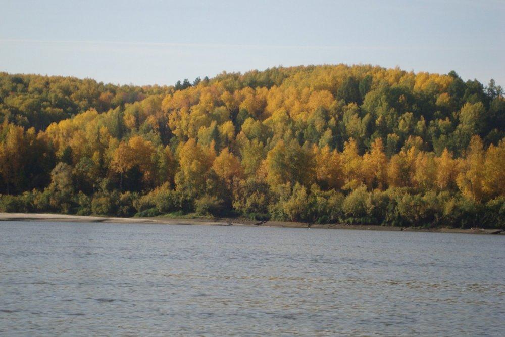 Осень в разгаре