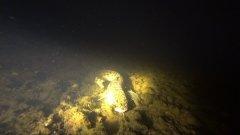 Подводная охота на Вычегда. Поиск налима. 2018.