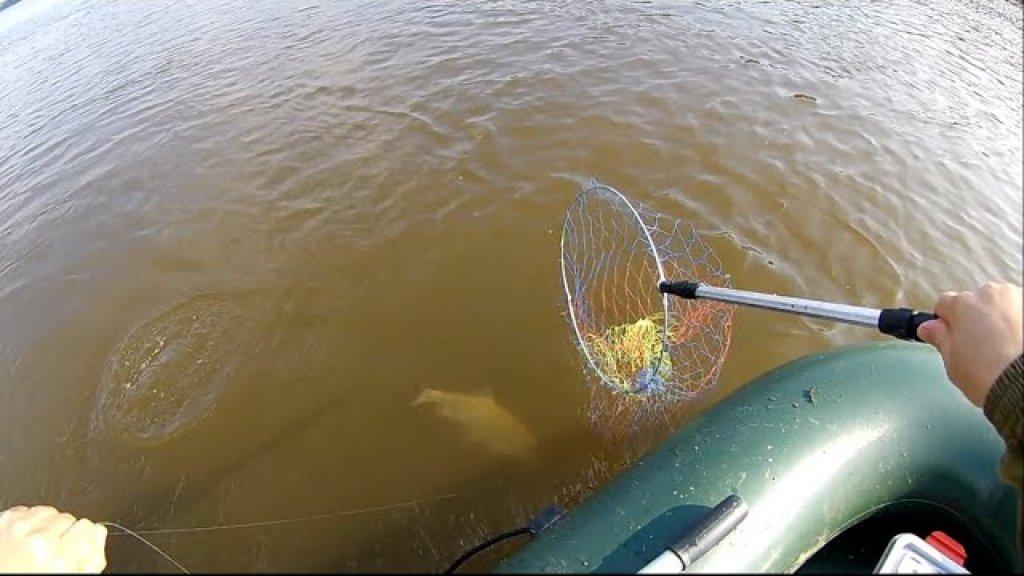 Первая рыбалка на кольцо. Испытываю снасть.