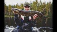 Ловля голодной щуки осенью. Рыбалка с надувного каяка.