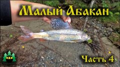 Малый Абакан, рыбалка (часть 4) | Small Abakan, fishing (part 4)