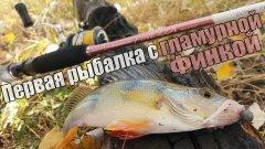 Первая рыбалка с Graphiteleader Finezza Nuovo GONFS-732UL-T-TG