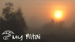 Алтай. Туманное утро