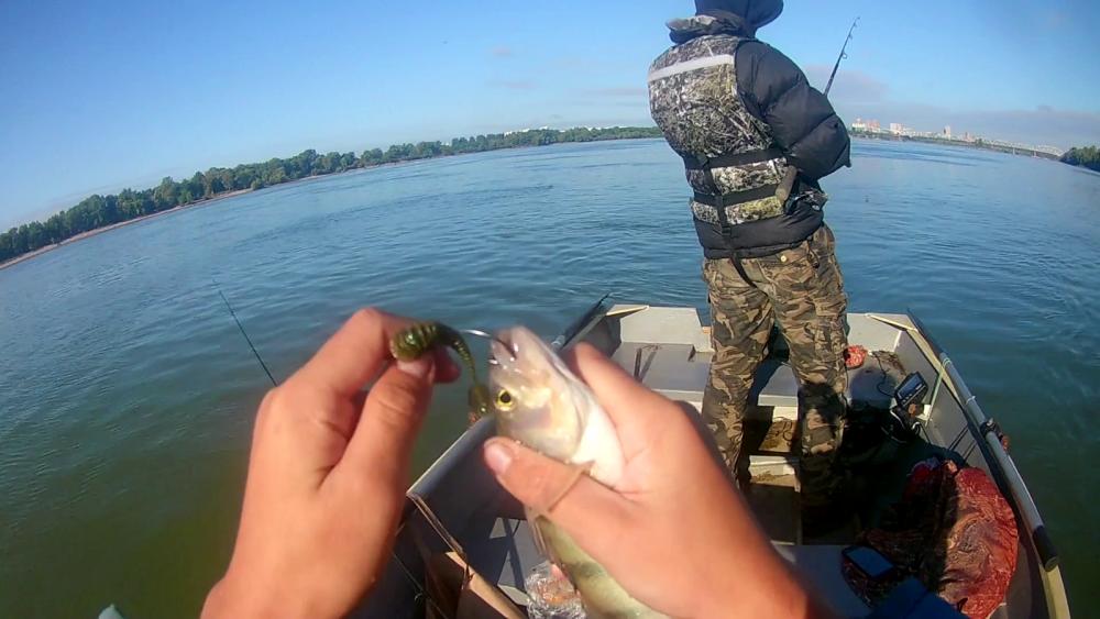 Судак: нет ничего лучше плохой погоды - Рыбалка для всех