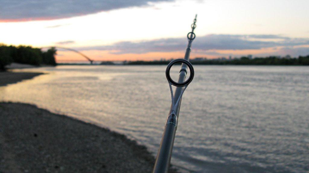 Спиннинг на судака: чем ловить клыкастого на большой реке