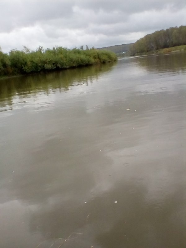 Река Иня.