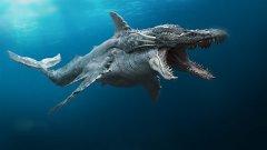 Топ-5 подводных монстров, которые реально существуют