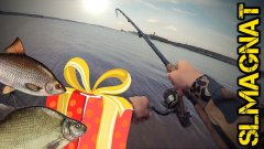 Рыбалка на ФИДЕР 2018+розыгрыш!Плотва на Бердском заливе!