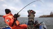 Не думал, что жирные щуки осенью прячутся в таком месте. Рыбалка на спиннинг.