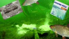 UPSA или ГИДРОПЕРИТ!? Шипучая прикормка.Рыбалка. Подводная съемка