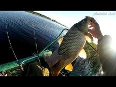 Рыбалка в сентябре, ловля на спиннинг с лодки: сазан, карась, язь