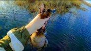 Охота на утку . Охота 2018. Природа Сибири. Озеро пустое.