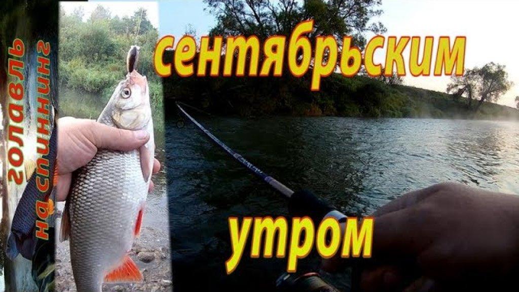 Ловля ГОЛАВЛЯ на спиннинг в сентябре.  Рыбалка на реке.