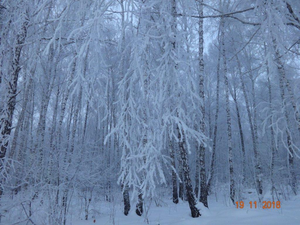 Равновесие снега и тишины