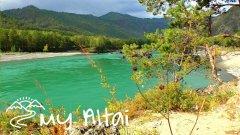 Горный Алтай, река Катунь возле с.Чемал