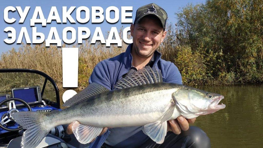 Рыбалка в Астрахани на судака!  Рыбий жыр 5 сезон.