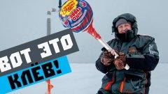 Зимняя рыбалка, ищем окуня на Ладоге в Лаврово