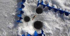Боится ли рыба шума ледобура? Интересный эксперимент