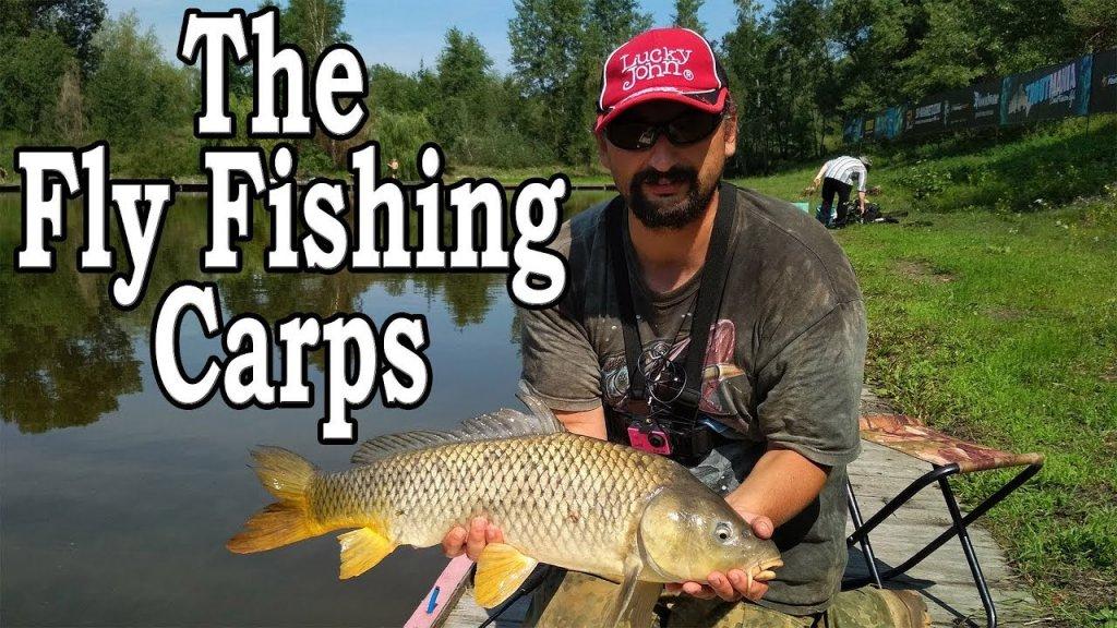 The Fly Fishing Carps