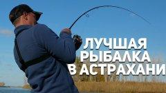 Астраханские РАЗДАЧИ! Лучшая рыбалка за все поездки в АО. Часть первая. Камызякский район