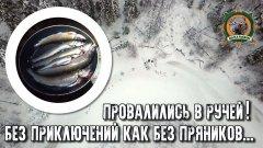 Первый лед 2018-2019/Провалились в ручей!/Приключения Сары