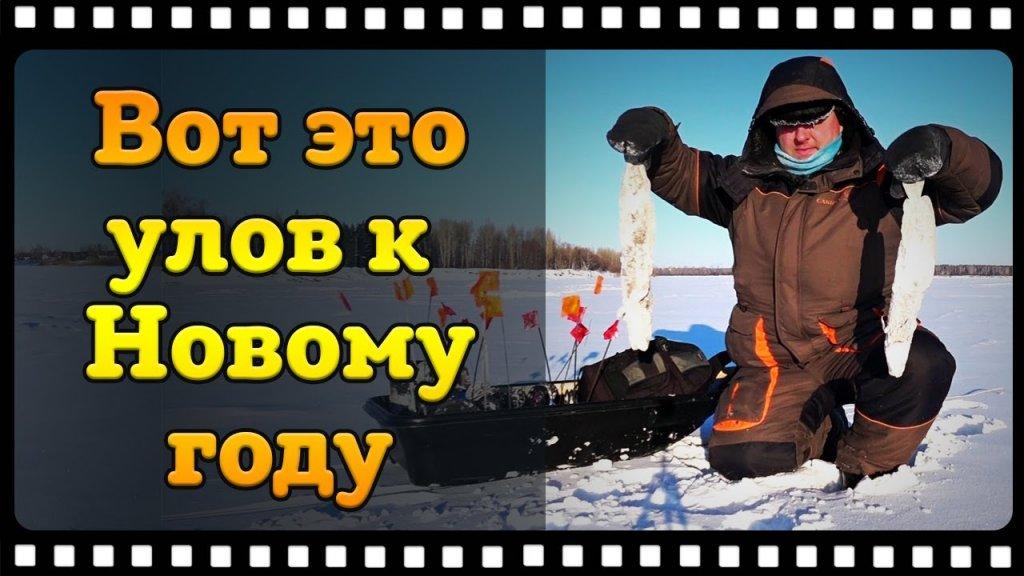 Рыбалка на жерлицы зимой или как поймать налима в декабре.