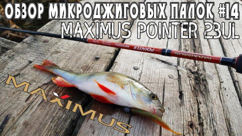 Обзор микроджиговых палок #14 Maximus Pointer 23UL