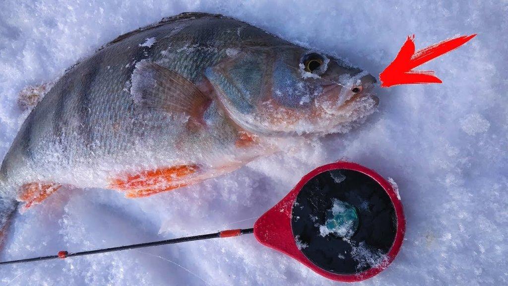 Не клевало! И вдруг я поставил эту мормышку! Рыбалка в глухозимье.
