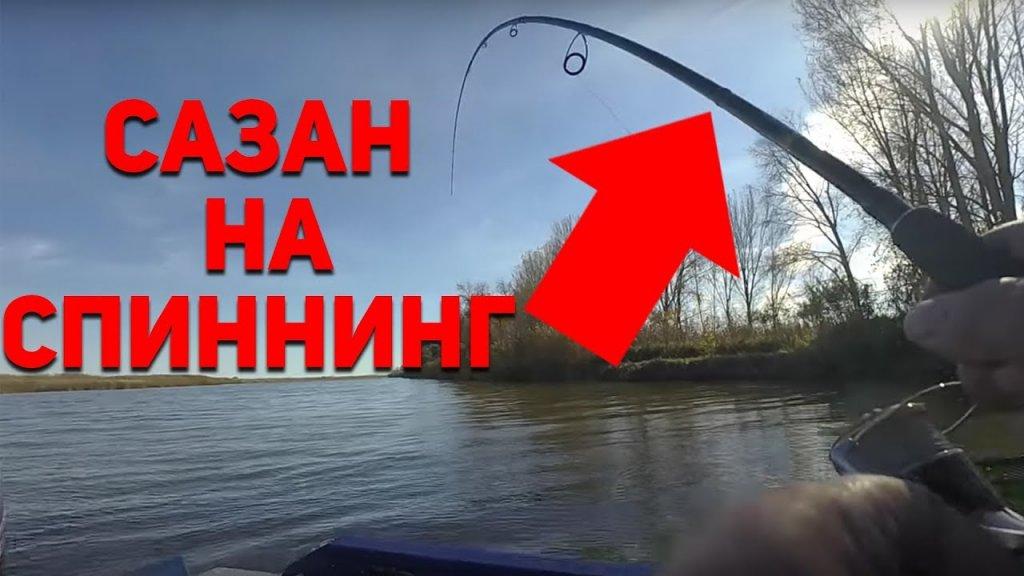 САЗАН НА СПИННИНГ?!  Тот случай на рыбалке, когда активного судака не достаточно)  Рыбий жЫр 5 сезон