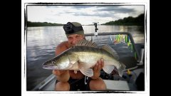 Как поймать трофейного судака - ахтуба рыбалка июль 2018 (троллинг в один спинниг)