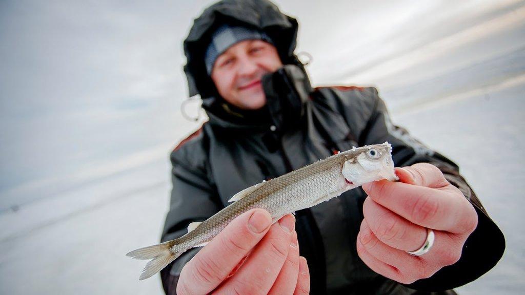 Рыбалка на корюшку на Финском заливе