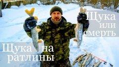 Щука на ратлины. Рыбалка 2018-2019. Рыбалка на щуку. Щука или смерть. Щука на балансир.