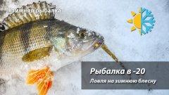Рыбалка в мороз  20.  Ловля на зимнюю блесну
