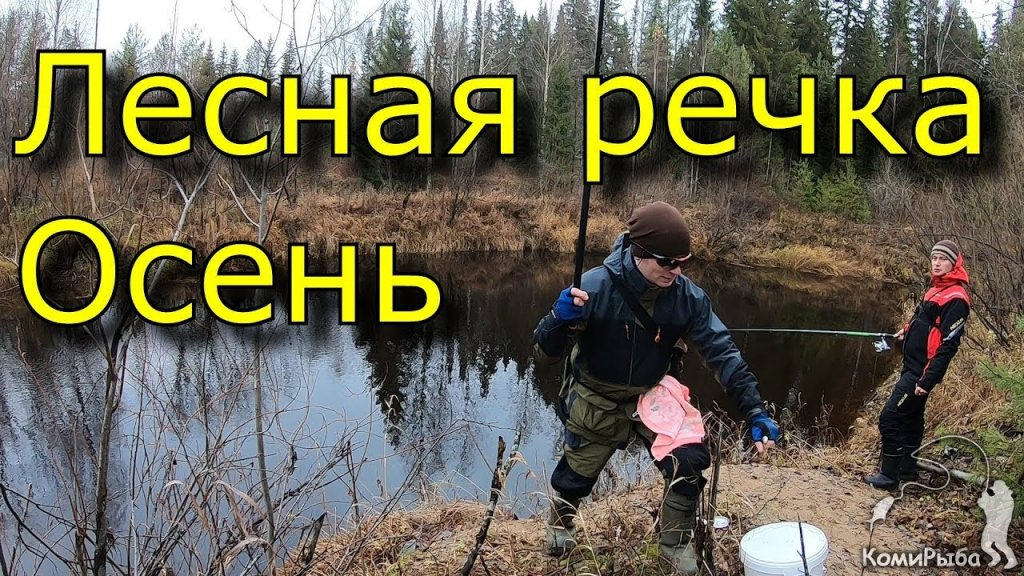 Рыбалка на лесной микроречке осенью 2018 года. Хариус. Елец. Сезон 2018 - закрыт!!!
