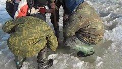 Вот что будет, если залететь на зимовальную яму сомов... Браконьеры?