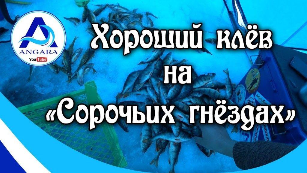 Зимняя рыбалка. Ангара.