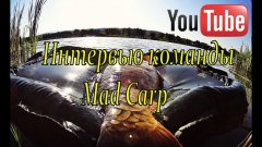 Mad Carp, семейный CARPFISHING, Чемпионат мира-2017.