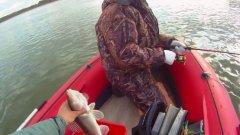 Ловля хищника осенью под Новосибирском. Воспоминания перед сезоном