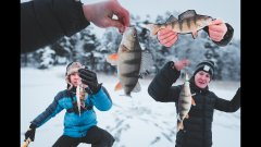 Сумасшедшие окуни Финского залива. Первая зимняя рыбалка подписчика. На рыбалку с подписчиком.
