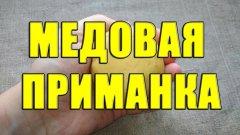 Медовая приманка для рыбалки своими руками. Приманка для мирной рыбы из меда и хлеба