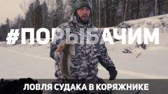 Ловля судака на реке в коряжнике. Вибы и балансиры. Окунь на безмотылку. Рыбалка в Томской области.