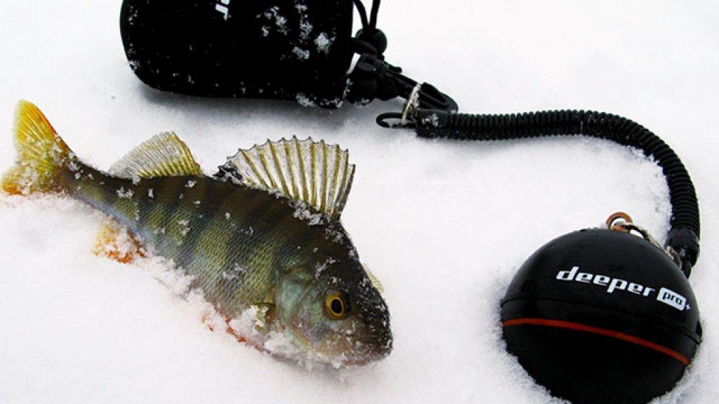 Эхолот для зимней рыбалки Deeper Pro+. Как я осваивал рыбопоисковую технику