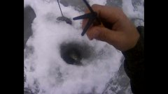 Зимняя рыбалка в декабре. Что влияет на клев рыбы?