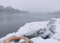 Берег Москва реки