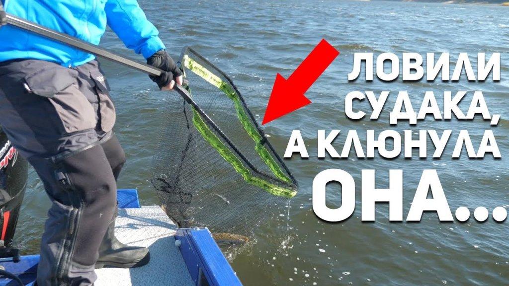 Ловили СУДАКА, а клюнула ОНА... Рыбий жЫр 5 сезон выпуск 29
